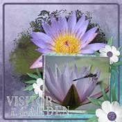 Visitor at the Garden (ADB Designs)