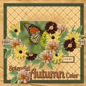 Splendid Autumn Color (pbs2)