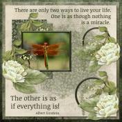 Miracles (ADB)