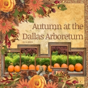 Autumn at the Dallas Arboretum (ads)