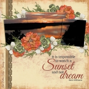It is impossible to watch a Sunset and not dream (sher)