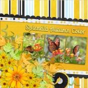 Splendid Autumn Color (tsbg)