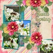 Sweet Spring (dfdd)