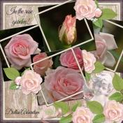 In the Rose garden! (dfdd)