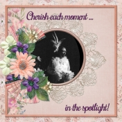 Capture each moment in the spotlight! (ADS)
