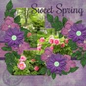 Sweet Spring (dfdd2)