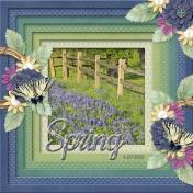Spring (sher3)