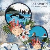 Sea World- San Antonio, Texas