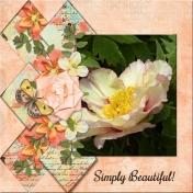 Simply Beautiful (dfdd2)