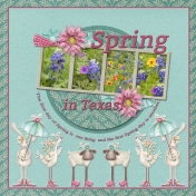 Spring in Texas (wd)