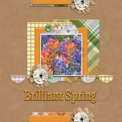 Brilliant Spring (rmartin)