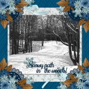 Snowy path in the woods! (RMartin)