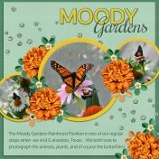 MOODY Gardens (REtrog)