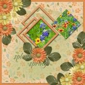 splendid spring (WD)