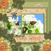 Sweet Spring (WD)