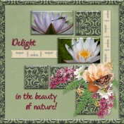 Delight in the beauty of nature! (PBS)