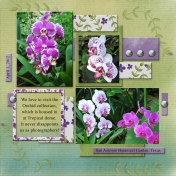 We love to visit the Orchid collection (GJones)