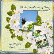 He has made everything beautiful ... (ADB)