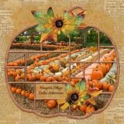 Pumpkin Village- Dallas Arboretum