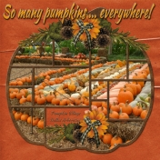 So many pumpkins ... everywhere! (WD)