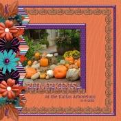 Pumpkins in the Dallas Arboretum (RMartin)