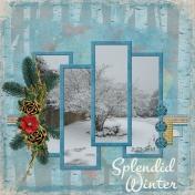 Splendid Winter (J Kemp