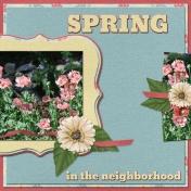 SPRING in the neighborhood (WD)
