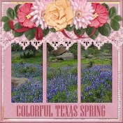 Colorful Texas Spring