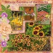 Botanic Garden of the Ozarks (DFDD)