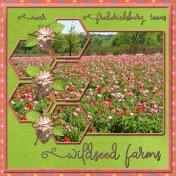 Wildseed Farms (WD)