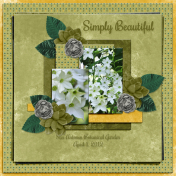 Simply Beautiful2 (wd)