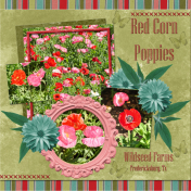 Red Corn Poppies (wd)