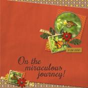 On the miraculous journey (mlerin)