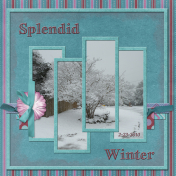 SPLENDID WINTER (wd)