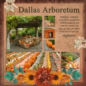 Dallas Arboretum (PBS)