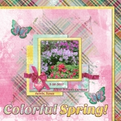 Colorful Spring!