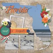 Florida Sand and Seagulls