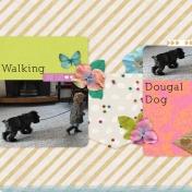 Walking Dougal Dog