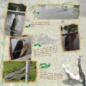 NOLA Swamp Tour #2