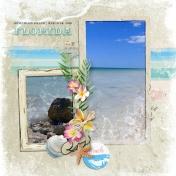 Honeymoon Island 2009