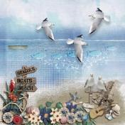 seagulls beach