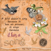 every bird has a song