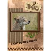 wolf in Gevaudan 2