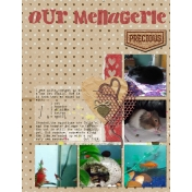 Our Menagerie