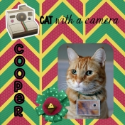 Famous Cats: Cooper