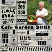 Cal's garden 2013