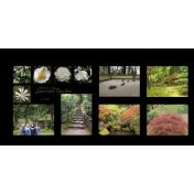 Portland Japanese Garden 2