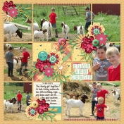Kids And Goats