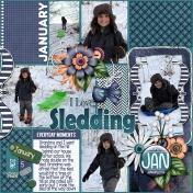 I Love Sledding