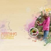 Feeding Lories